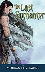 Cover image for Morgan's novel The Last Enchanter