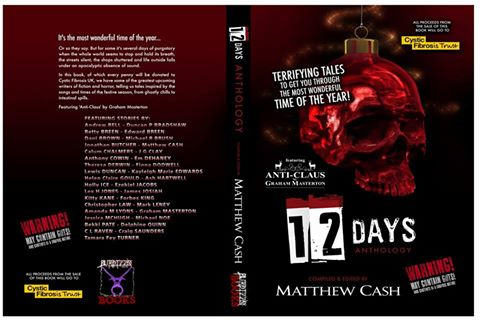 Cover for 12Days anthology